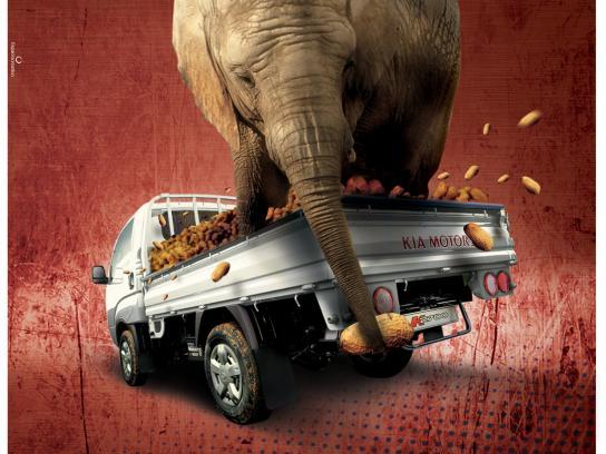 KIA Print Ad -  Elephant