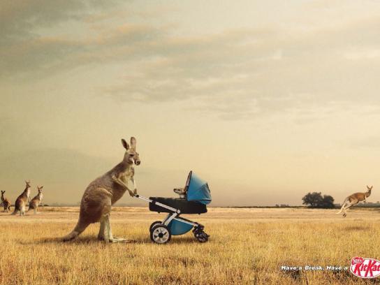 Nestle Print Ad -  Kangaroos