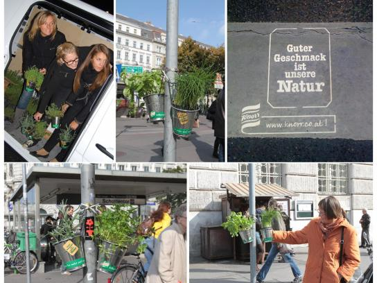 Knorr Ambient Ad -  Knorr Guerilla Gardening