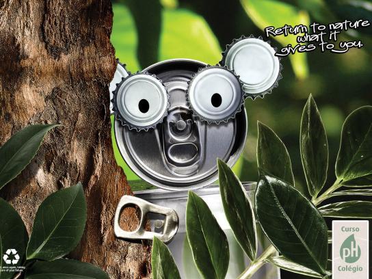 pH Print Ad -  Koala
