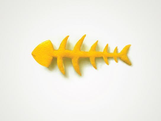 Koroplast Print Ad -  Fishbone
