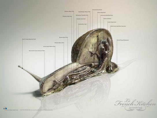 HTC Communications Print Ad -  Snail
