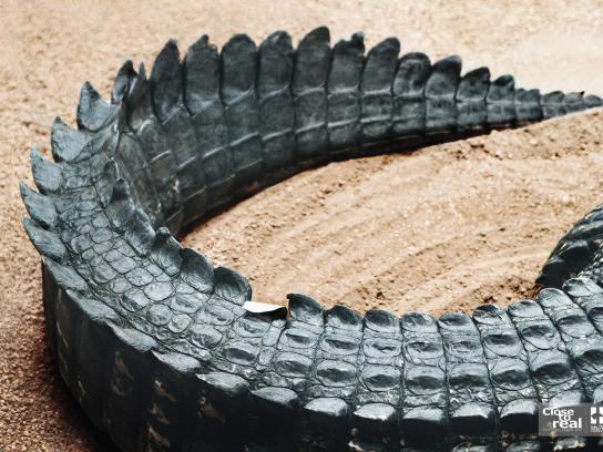 IM Print Ad -  Crocodile