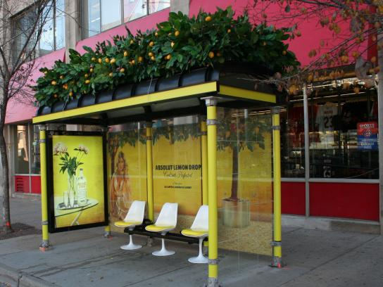 Absolut Outdoor Ad -  Lemon Drop bus stop