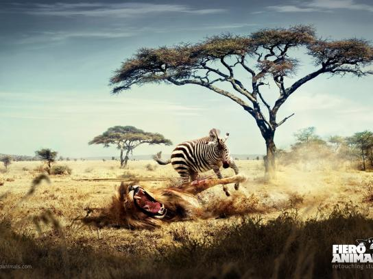 Fiero Animals Print Ad -  Lion Zebra