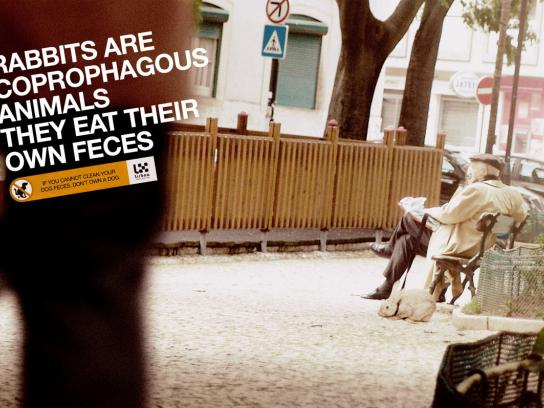 Lisbon City Council Print Ad -  Rabbit
