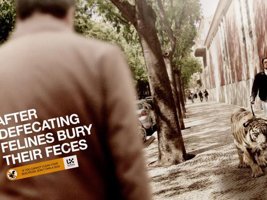 Lisbon City Council Print Ad -  Tiger