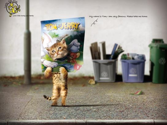 Lucky Cat Club Print Ad -  Tom