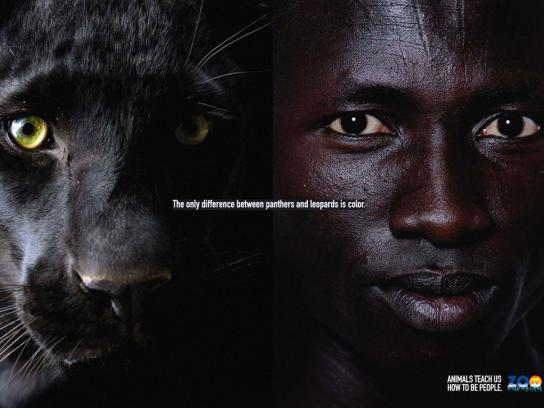Madrid Zoo Print Ad -  Black leopard