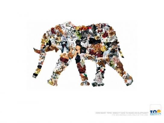 Madrid Zoo Print Ad -  Fifis