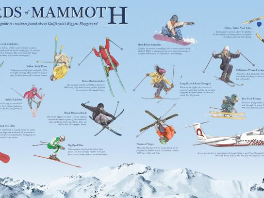 Mammoth Outdoor Ad -  Birds