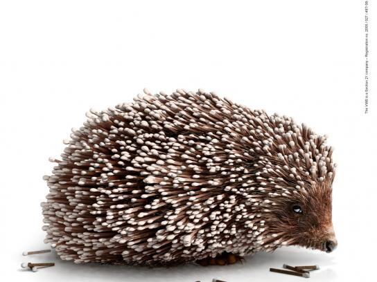 Volunteer Wildfire Services Print Ad -  Match Hedgehog