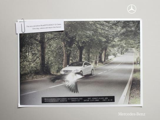 Mercedes Print Ad -  Bird