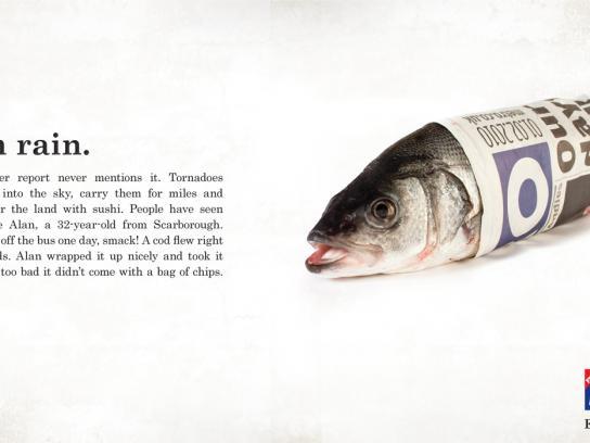 Metro Print Ad -  Raining Fish