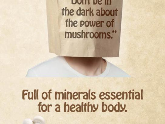 Australian Mushroom Growers Association Print Ad -  Minerals