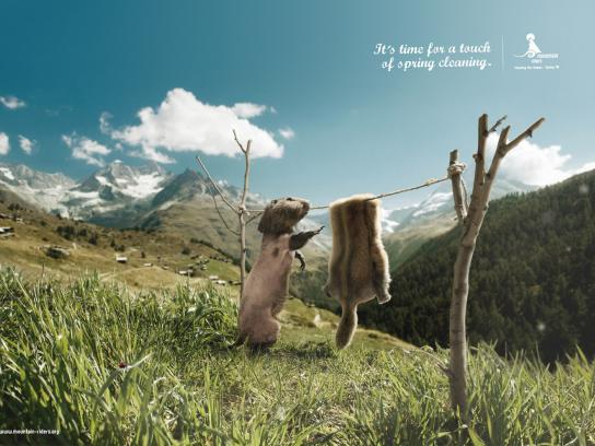 Mountain Riders Print Ad -  Spring cleaning