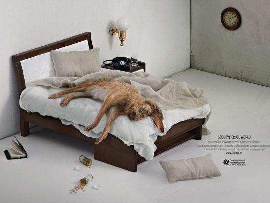 China Environmental Protection Foundation Print Ad -  Rabbit