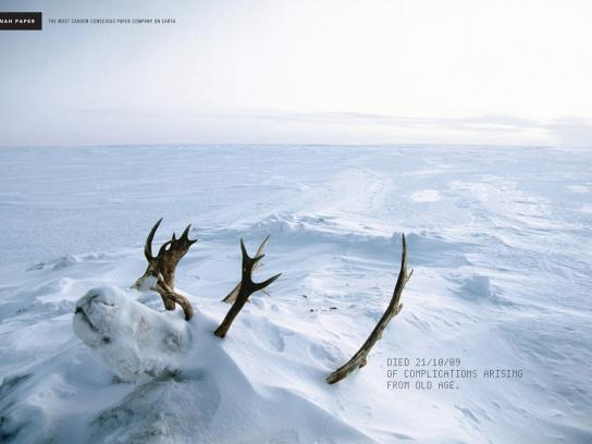 Neenah Print Ad -  Reindeer