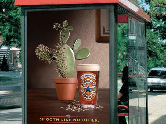 Newcastle Brown Ale Print Ad -  Cactus