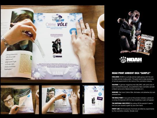 Noah Ambient Ad -  Sample