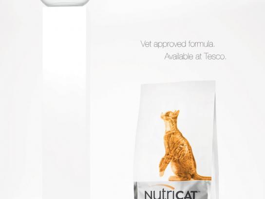 Nutricat Print Ad -  Indoor