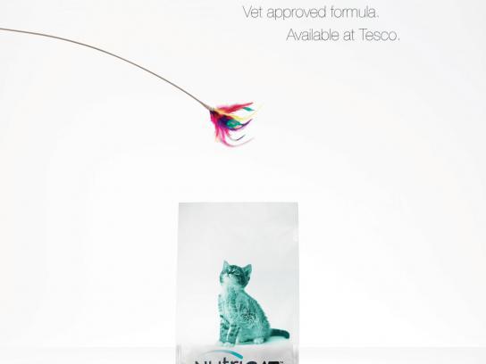 Nutricat Print Ad -  Kitten