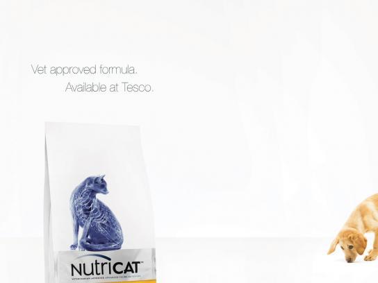 Nutricat Print Ad -  Mature
