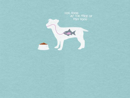Cachupin Print Ad -  Fish