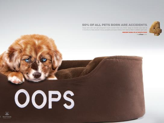 Best Friends Print Ad -  Oops