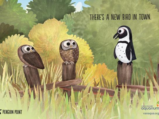 Vancouver Aquarium Print Ad -  Owls