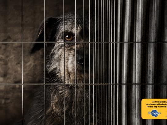 Pedigree Print Ad -  Dog Cage, 1