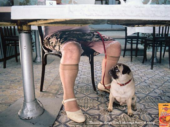Pedigree Print Ad -  Lady's dog