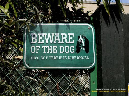 Pedigree Print Ad -  Diarrhoea