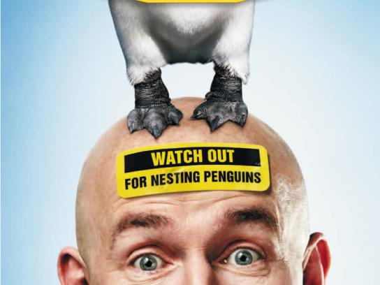 Today FM Print Ad -  Penguin