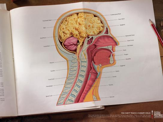 Peninsula School Feeding Association Print Ad -  Brain