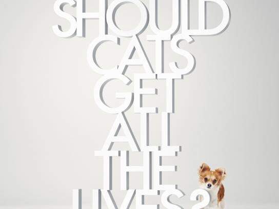 Paws for the Cause Print Ad -  Cats