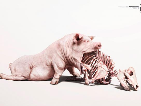 WMF Print Ad -  Pork