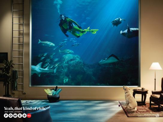 New York Lottery Print Ad -  Aquarium