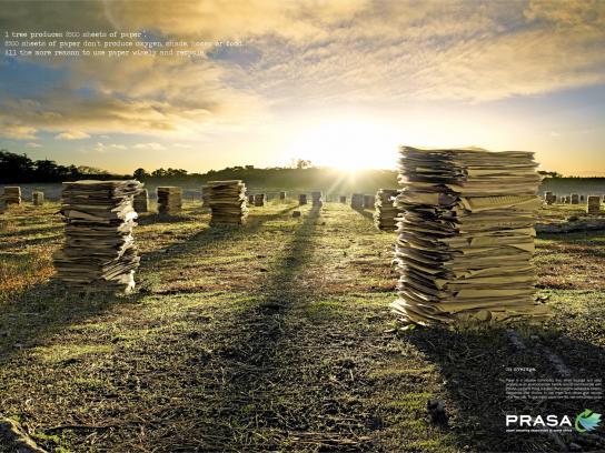 PRASA Print Ad -  Paper Forest