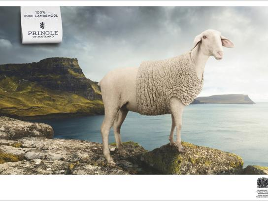 Pringle of Scotland Print Ad -  Sea