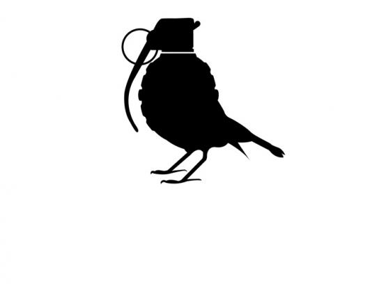 Pro Wildlife Print Ad -  Sparrow