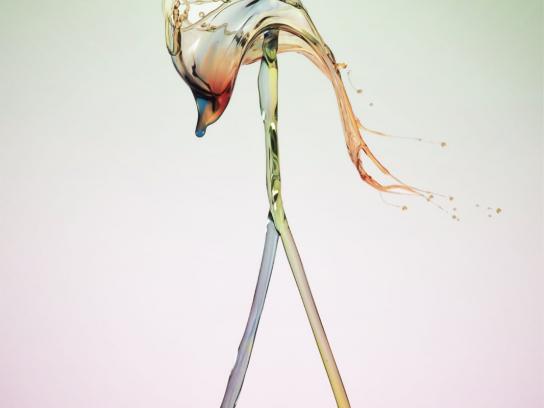 Ragga Magazine Print Ad -  Flamingo