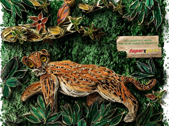 SuperPaco Print Ad -  Rainforest Paper