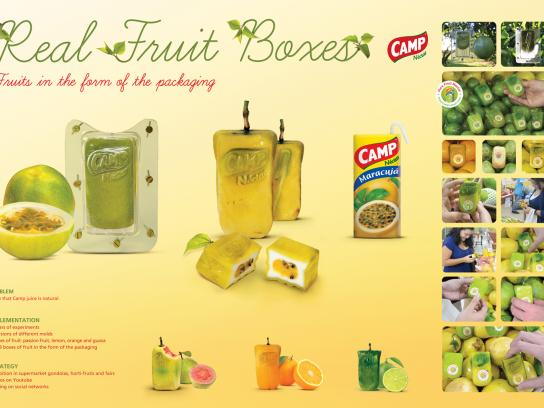Camp Nectar Ambient Ad -  Real Fruit Boxes