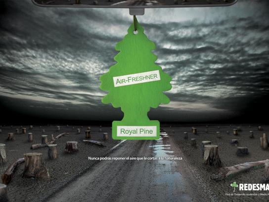 REDESMA Print Ad -  Pine