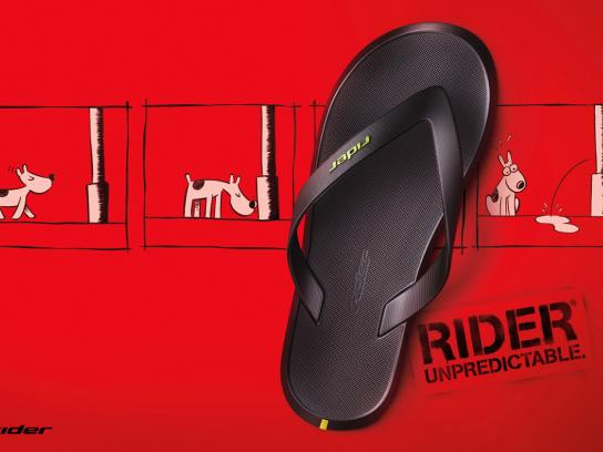 Rider Print Ad -  Dog
