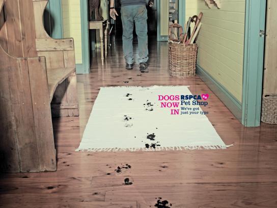 RSPCA Print Ad -  Dogs