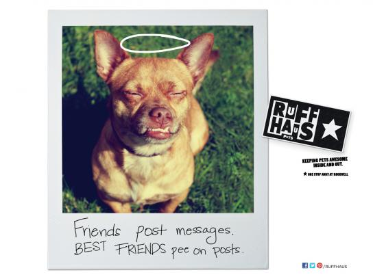 Ruff Haus Pets Print Ad -  Pee on Posts