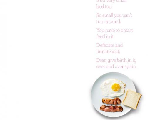 SAFE Print Ad -  Breakfast
