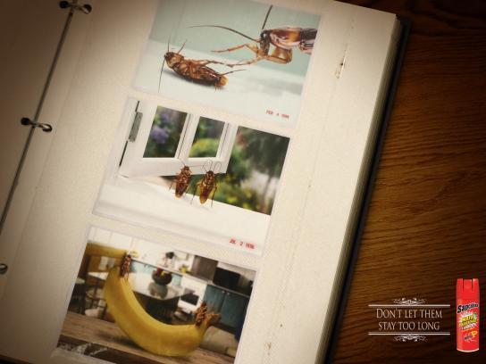 Sapolio Print Ad -  Album